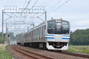 Dsc_4901s