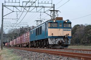 Dsc_2593s