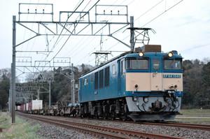 Dsc_2603s