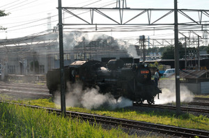 Dsc_7527s